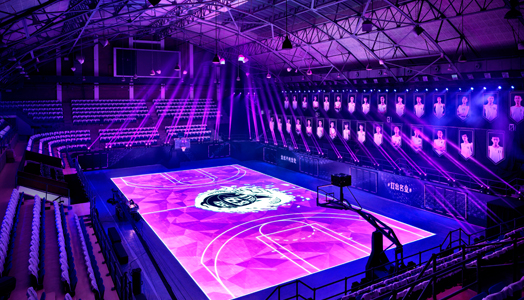 House of Mamba - Reactive LED Basketball Court