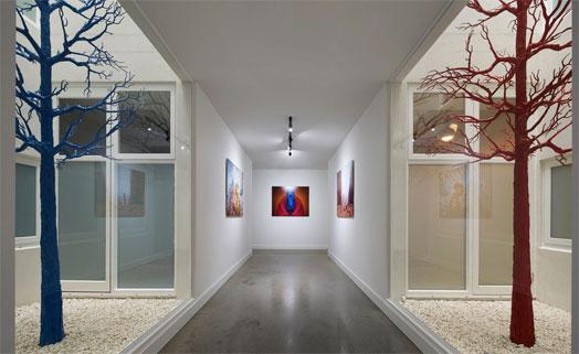 corridor as a de facto art gallery