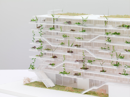 'Offices with Terraces' designed by Nicolas Laisné Associés - model