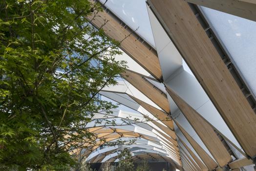 timber lattice roof