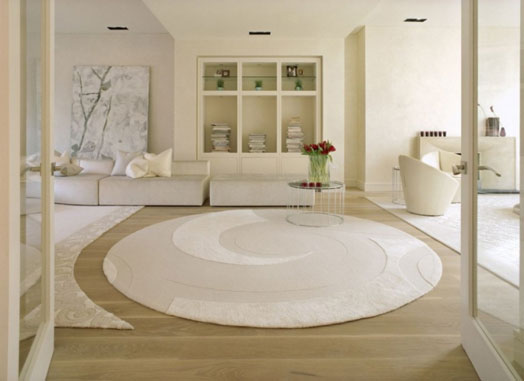 modern luxury area rug