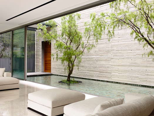 reflective pool flanking living area