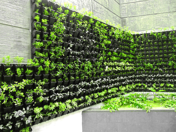 landscaped wall