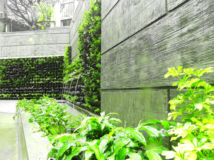 landscaped wall at Gallery G