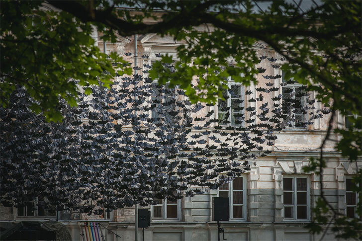 paper bats - art installation at Nature Concert Hall 2016