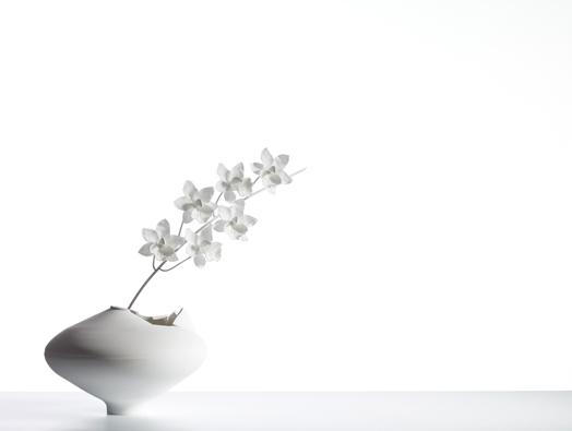 Cymbidium-Ming-Vase-Jeremy-Cole