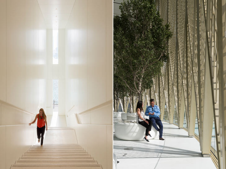 """trees Foster+Partners Apple Dubai Mall indiaartndesign"""