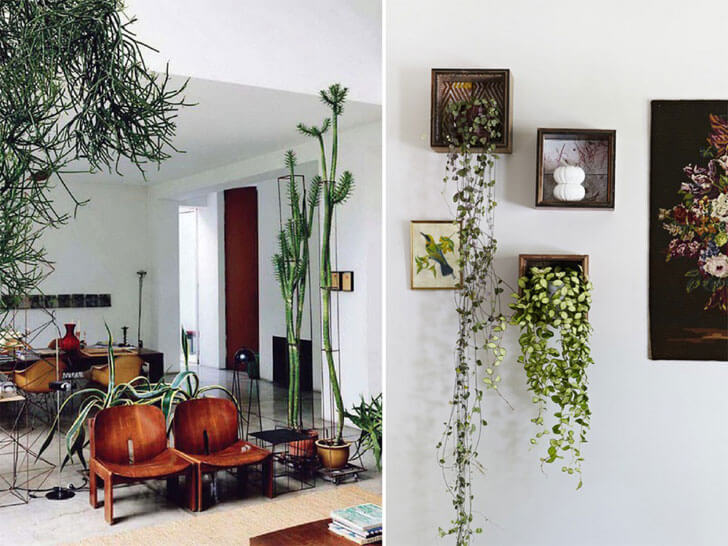 """indoor plants living room decor indiaartndesign"""