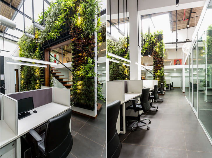 """vertical garden office design the orange lane indiaartndesign"""