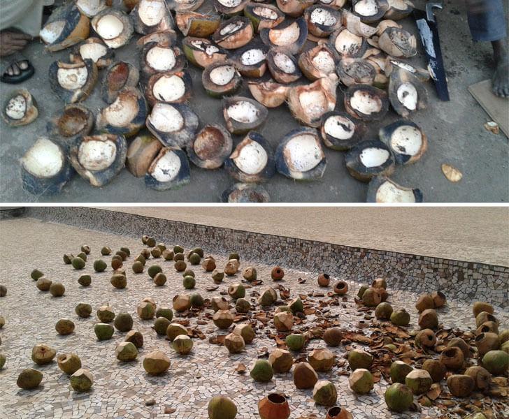 """coconut husk coconut house jayneel trivedi indiaartndesign"""
