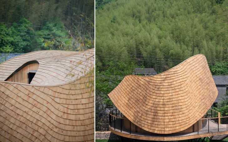 """roof curvature tree wow monoarchi architects indiaartndesign"""