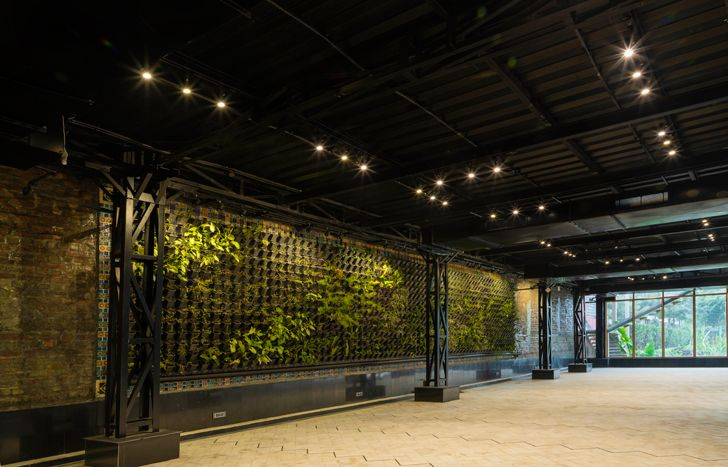 """vertical garden panipat house intrigue designs indiaartndesign"""