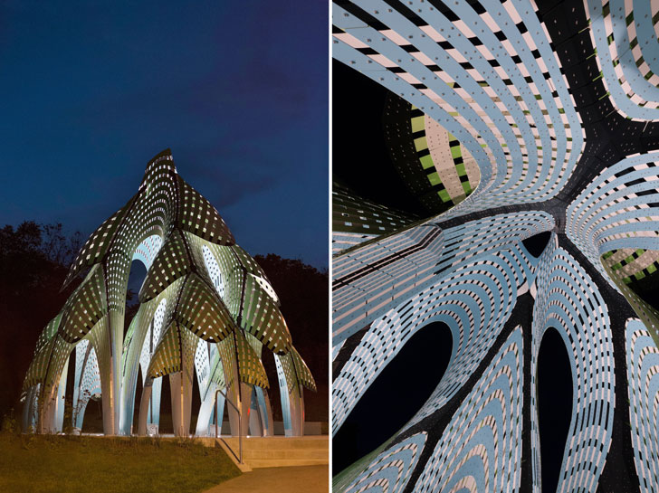 """THEVERYMANY Pine Sanctuary by night indiaartndesign"""