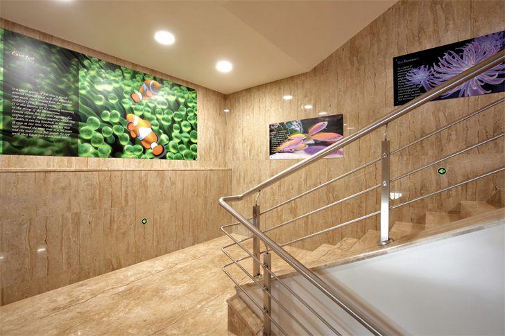 """Witty Intl School staircase SPIRIT indiaartndesign"""