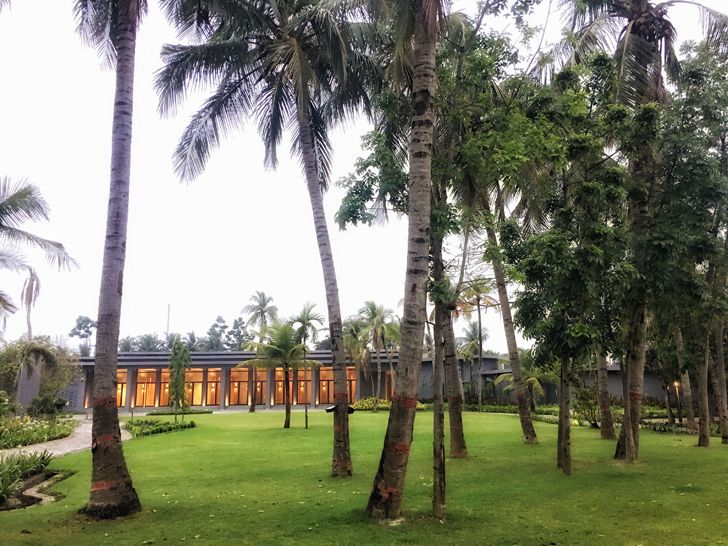 """existing trees amaya resort salient design indiaartndesign"""