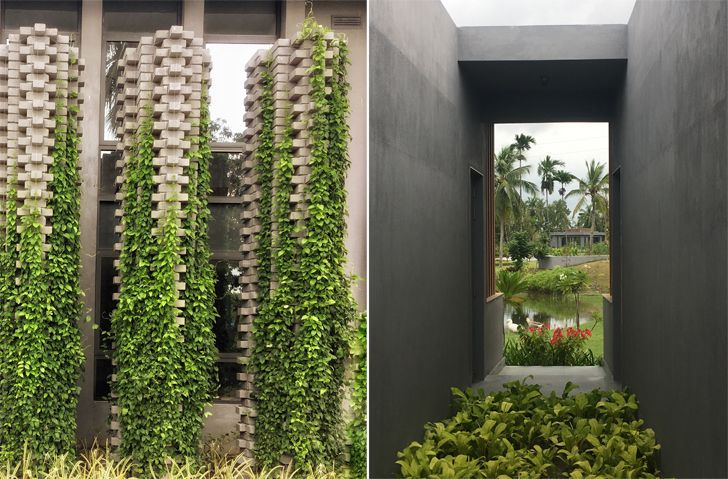 """green cover amaya resort salient design indiaartndesign"""