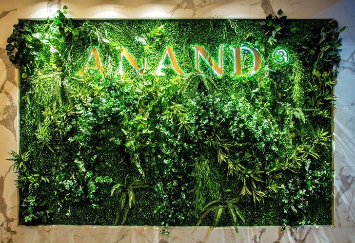 green wall AnandSweets bengaluru RMDK indiaartndesign